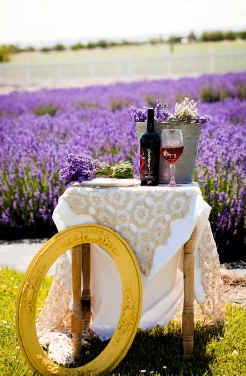 Sno Road Winery at Purple Ridge Lavender in Eastern Oregon